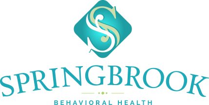 Autism Behavioral Mental Health Programs Springbrook