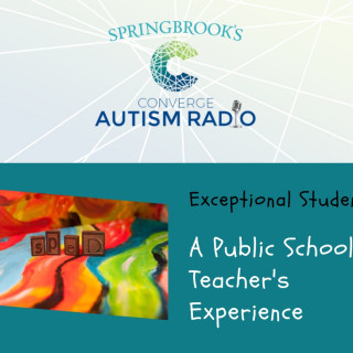Exceptional Students: A Public School Teacher's Experience