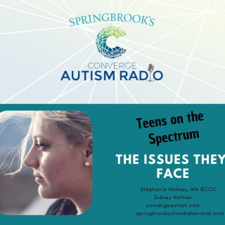 Teens on the Autism Spectrum and the Issues they Face